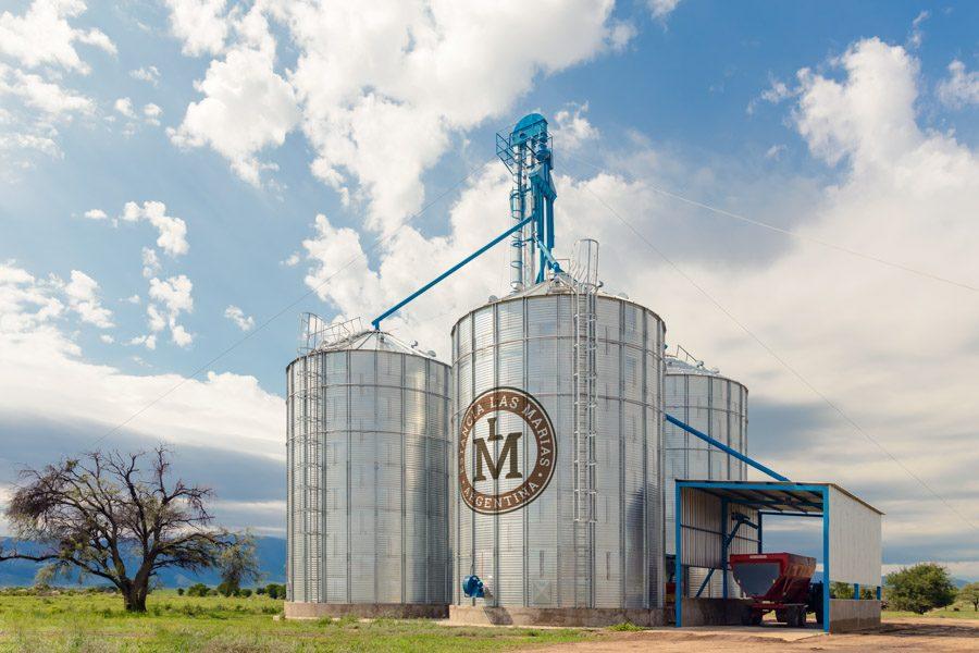 silo ganado hacienda